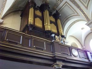 Organ, 2