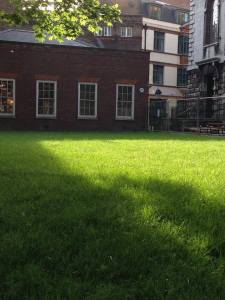 South Churchyard with new grass, May 2014